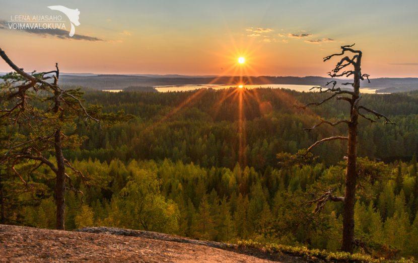 Hyyppäänvuori Keski-Suomen Koli voimavalokuva Leena Aijasaho