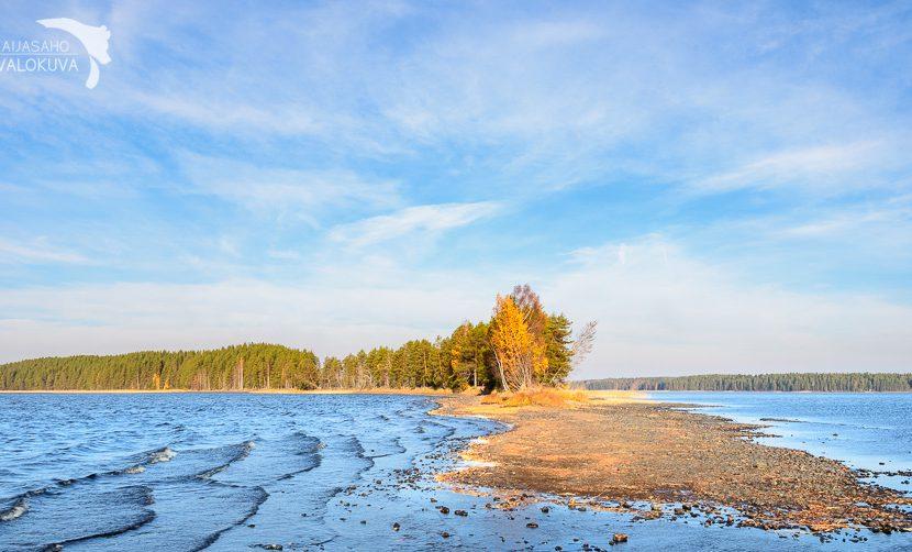 Valokuvauskurssi 12.-13.10.2019 Summassaari, Saarijärvi Leena Aijasaho voimavalokuva.fi