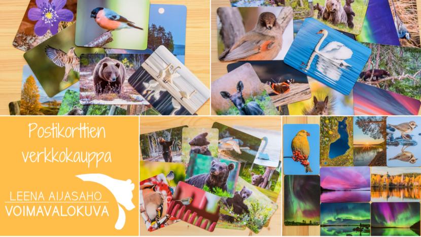 Voimavalokuva luontokuva postikortit