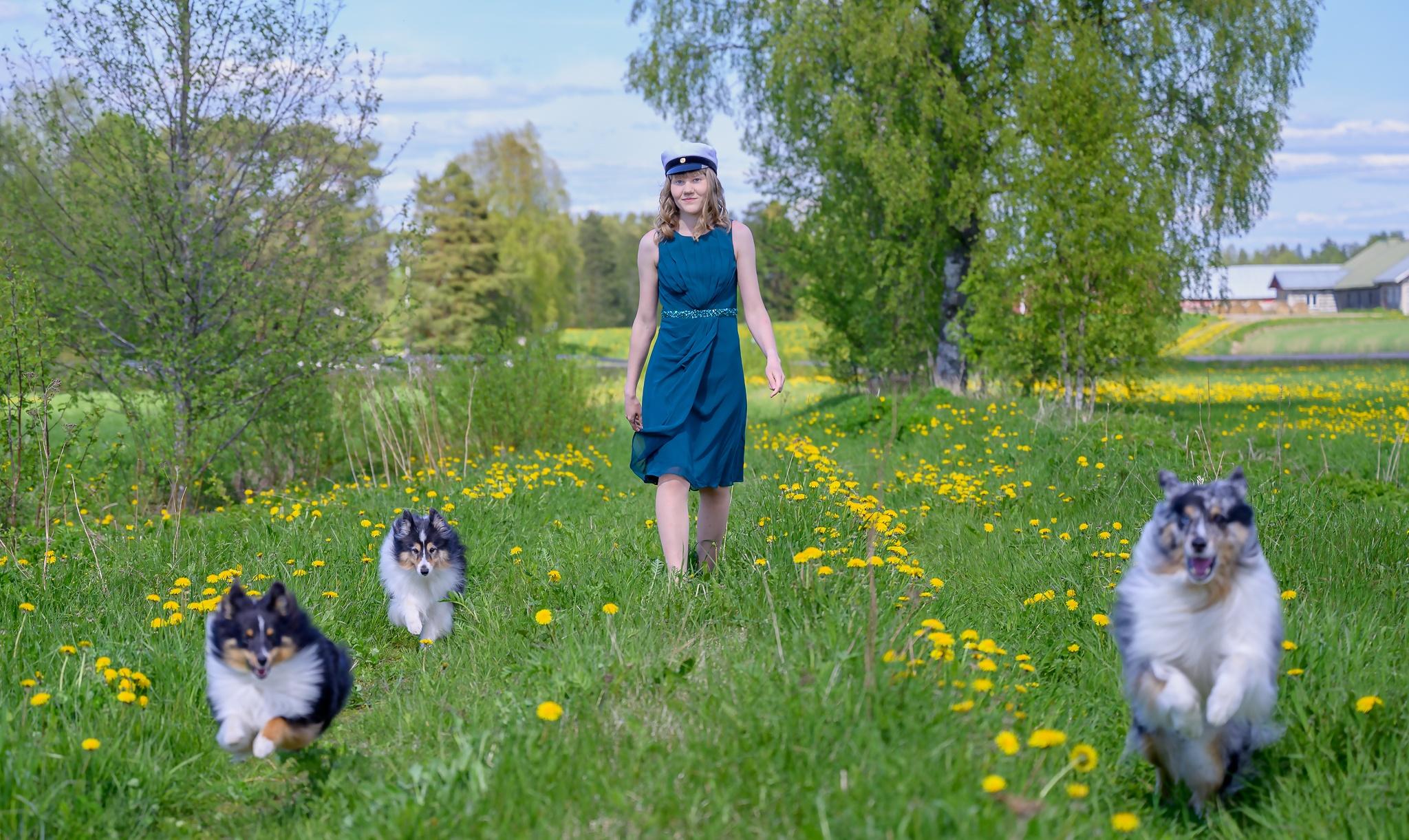 Ylioppilaskuva koirien kanssa Voimavalokuva Leena Aijasaho Saarijärvi